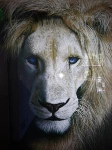 My Shape Shifting Lion Friend - on for the Soul Journey