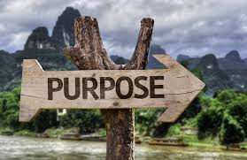 Purpose image